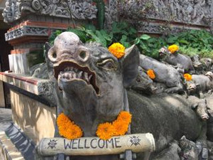 Ubud_ibuoka_welcome_angry